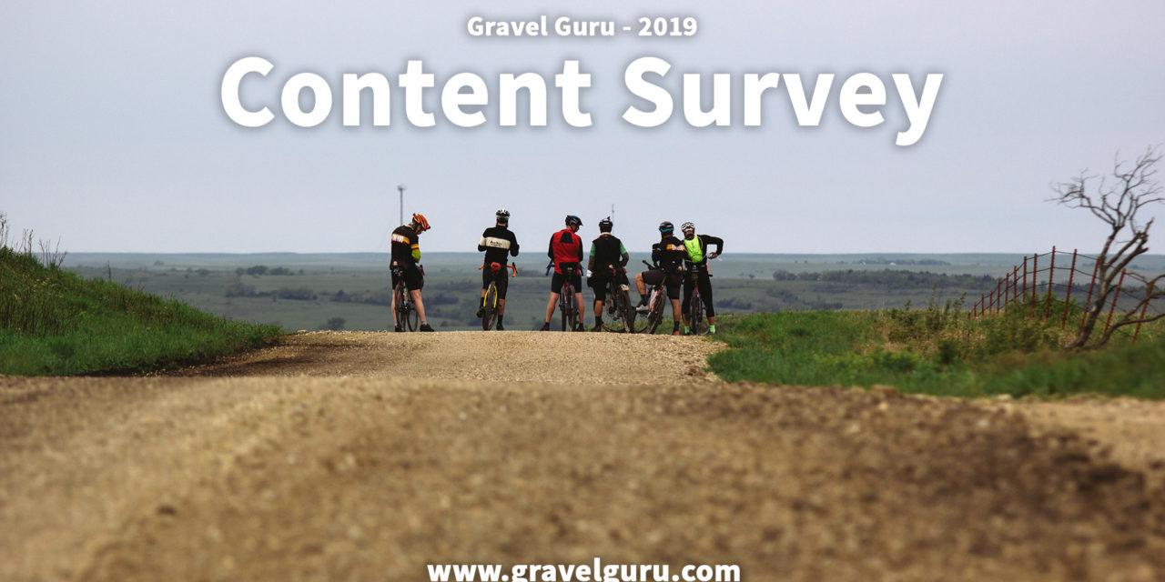 2019 Content Survey